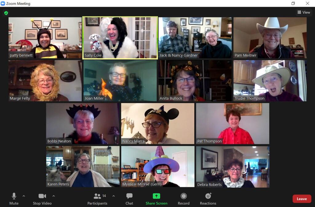 costume party via videoconferencing